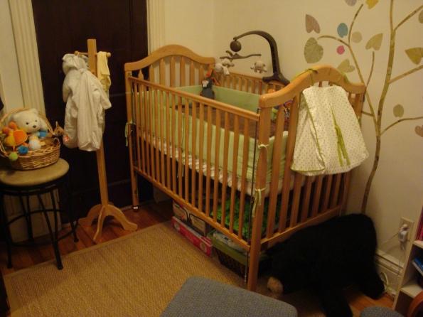Nursery - Crib