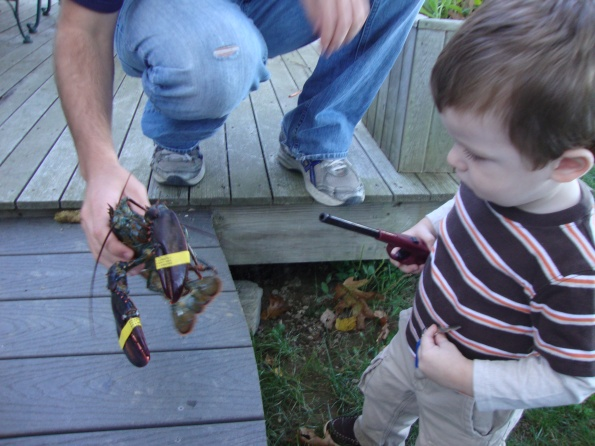 Toddler and Lobster